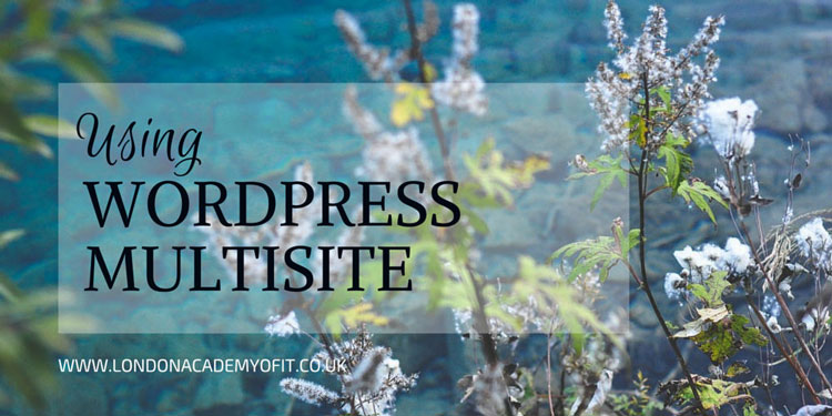 WordPress Multisite offers some powerful features but it's not right for everyone. Here, we explore all the pros and cons.